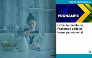 Linha De Credito Do Pronampe Pode Se Tornar Permanente - contabilità.sig | Soluções Inteligentes em Gestão